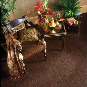 Karastan carpeting